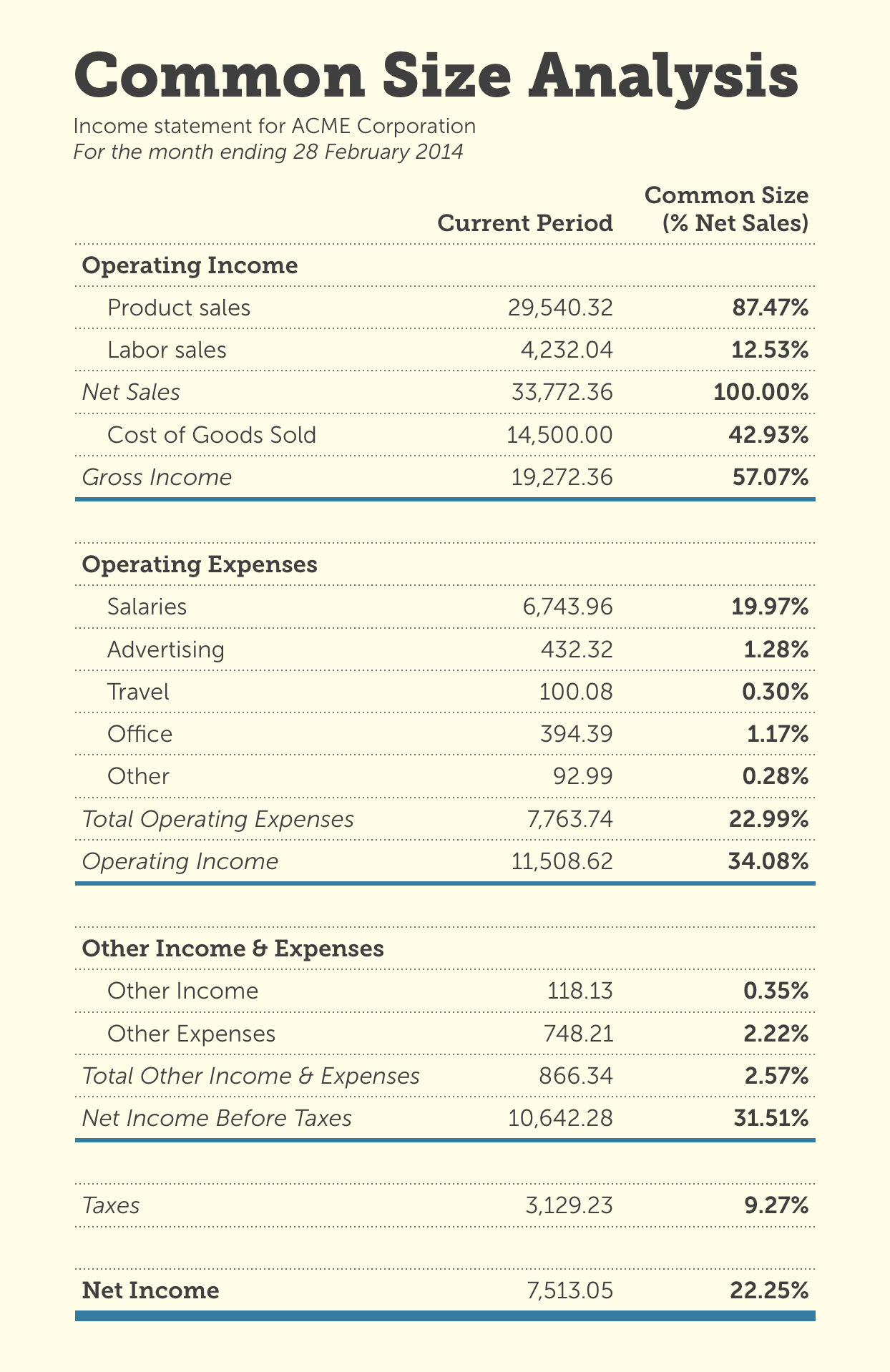 A sample income statement modified for common size analysis
