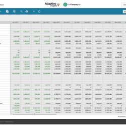 Screenshot: Adaptive Planning Balance Sheet