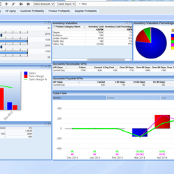 Screenshot: Business Intelligence