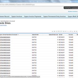 Screenshot: Invoiced Serial Numbers