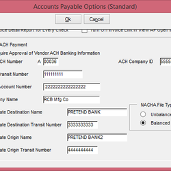 Screenshot: Accounts Payable Options