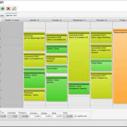 Screenshot: Timesheet