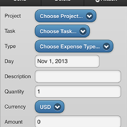 Screenshot: Expense