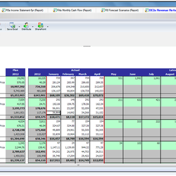 Screenshot: Revenue Planning