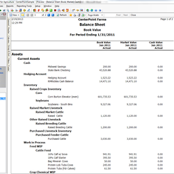 Screenshot: Balance Sheet