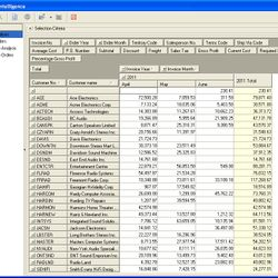 Screenshot: Business Intelligence Report