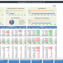 Screenshot: Analytical Profit + Loss Report