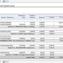 Screenshot: Accounts Payable Aging Report