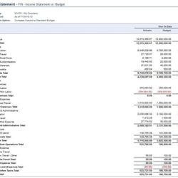 Screenshot: Financial Statements