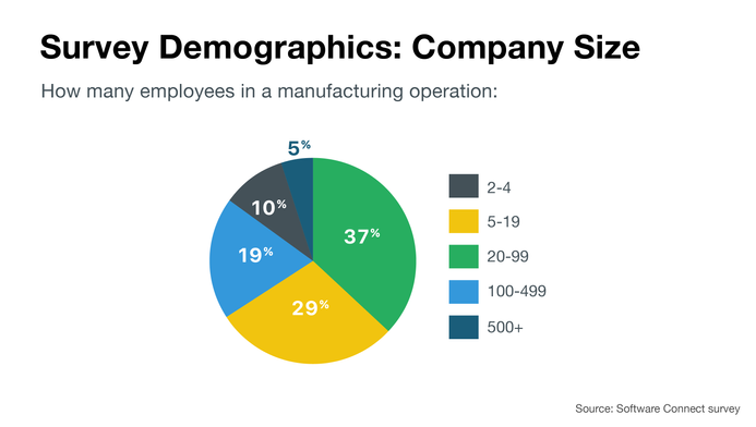 Survey demographics: company size